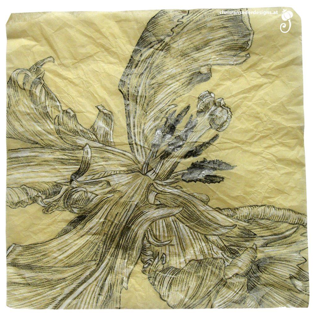 Pencil drawing of a tulip. | Bleistiftzeichnung einer Tulpe.