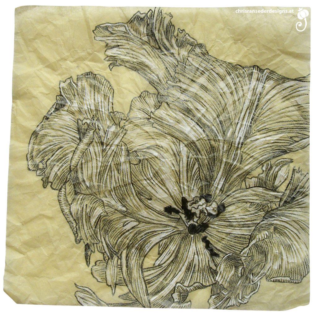 Drawing of a faded tulip. | Zeichnung einer verwelkten Tulpe.