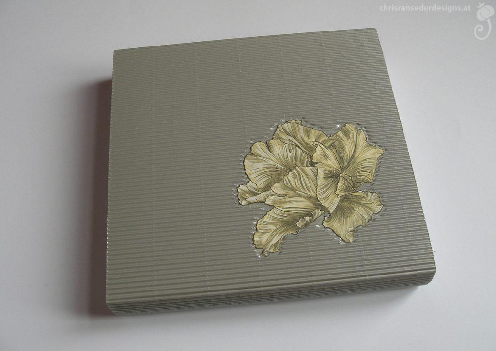 The box protecting the Tulipbook. | Die Schachtel zum Schutz des Tulpenbuchs.