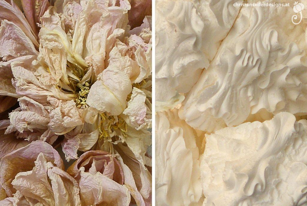 Detail of wilted peonies. Fissured little meringue-mountains. | Detail verwelkter Päonien. Rissige Windbäckerei.