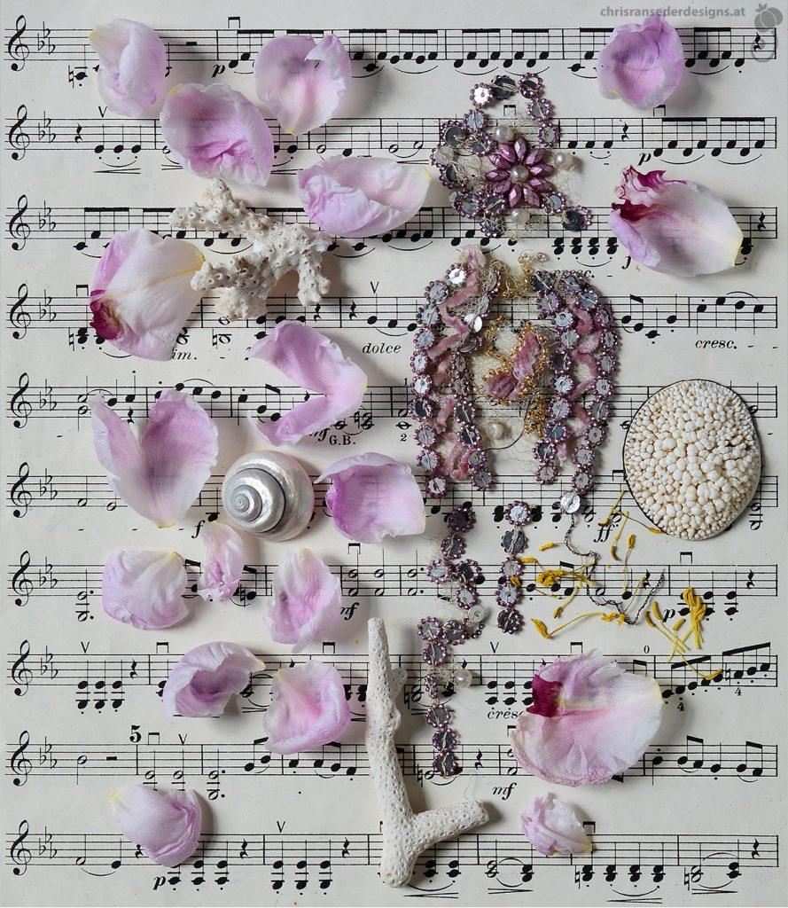 Still life with petals of a peony, coral on sheetmusik. Stillleben mit Päonienblättern und Korallen auf einem Notenblatt.