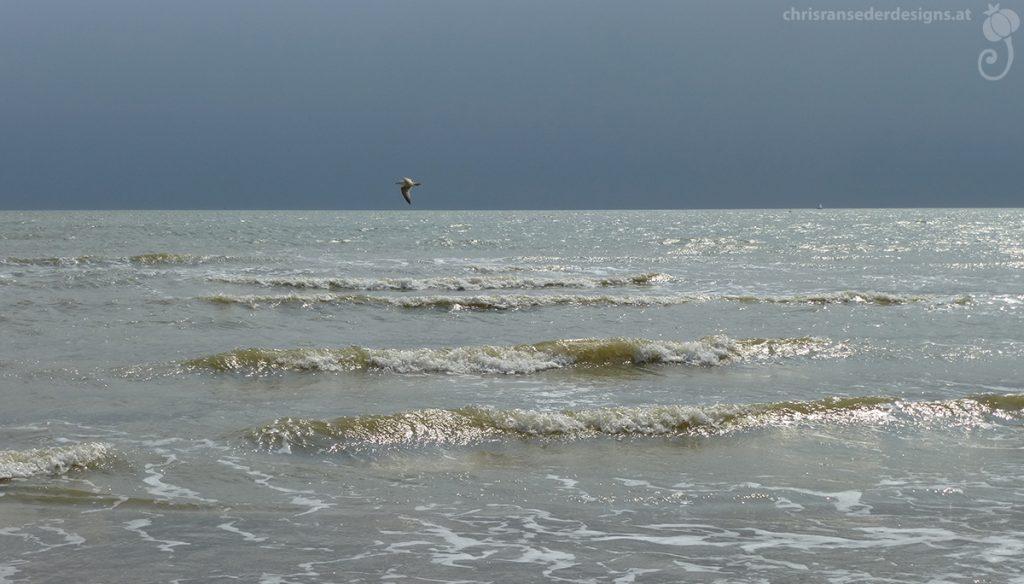 Picture of the ocean. | Foto von Meereswellen, ein Vogel am Horizont.