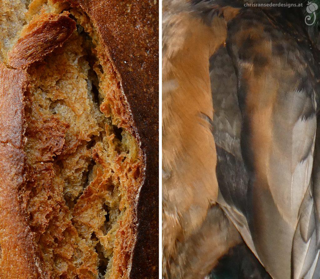 Split crust of a medium brown bread. Back of a duck with brown and reddish plumage. | Aufgeplatze Kruste eines mittelbraunen Brotes. Entenrücken mit braunen und rötlichen Federn.
