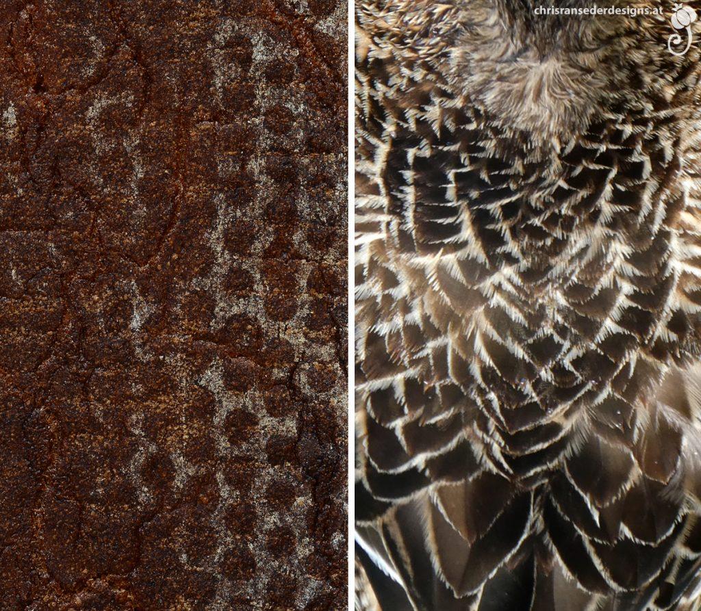 Underside of a dark brown bread with a pattern of dots. Duck plumage layered like scales. | Unterseite eines dunkelbraunen Brots mit Punktmuster. Entenfedern, die wie Schuppen angeordnet sind.