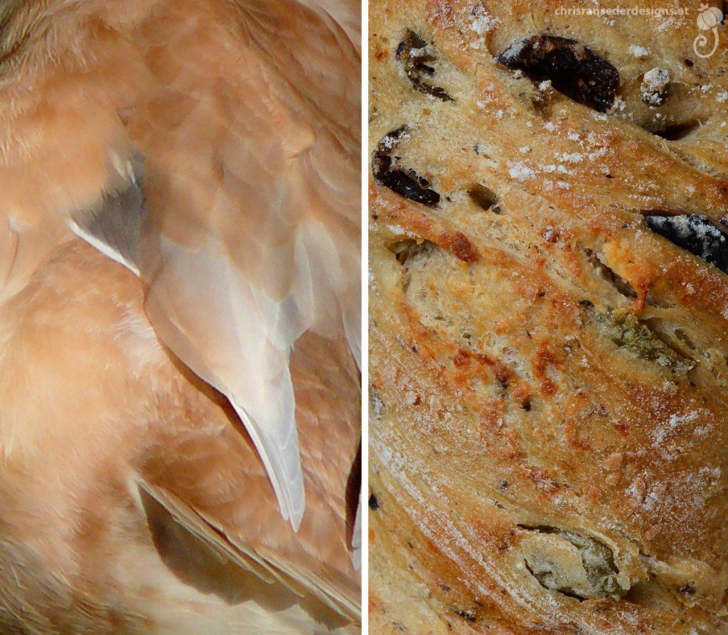 White and light reddish plumage. Twisted crust with olives. | Weiße-rötliches Gefieder. Gedrehte Kruste mit Olivenstückchen.