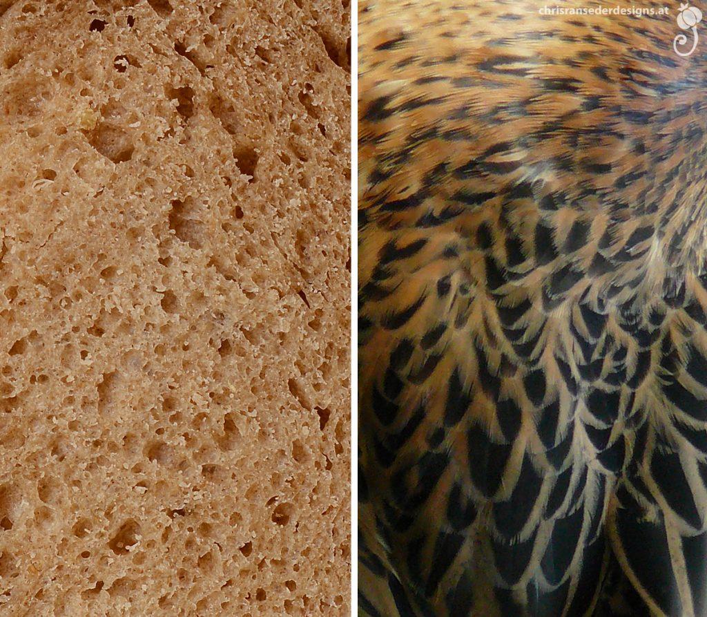 Close-up of a slice of bread. Dark and medium brown feathers at neck and shoulder of a female mallard. | Nahaufnahme einer Brotscheibe. Dunkel- und mittelbraune Federn an Hals und Schulter einer weiblichen Stockente.